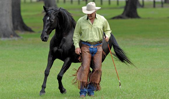 Pat Parelli, parelli natural horsemanship