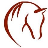 equiday, paardvriendelijk evenement, natural horsemanship evenement, nhdag