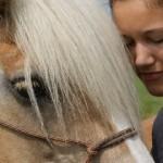 'Maar mijn paard is niet geschikt voor NH!'