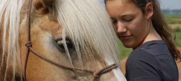 Mijn paard is niet geschikt voor natural horsemanship