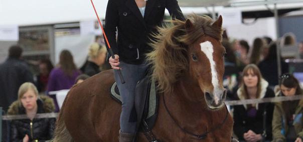 EquiDay, het paardvriendelijkste evenement van Nederland