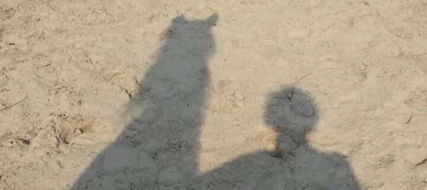 een zijn met je paard, paarden lichaamstaal, sarina gul