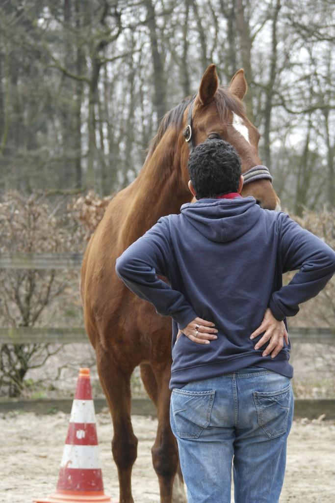 paardencoaching, lichaamstaal, wendela den tonkelaar