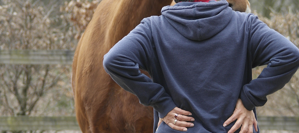 uitstraling, lichaamstaal, paardencoaching