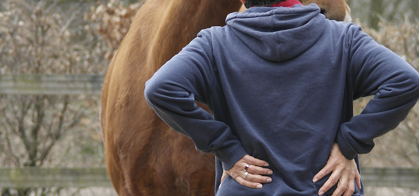 Verbeter je uitstraling met hulp van een paard