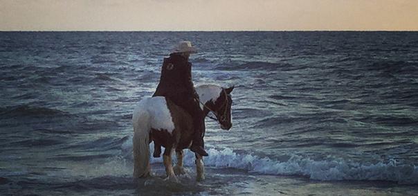 Vakantie: genieten van paardstaren
