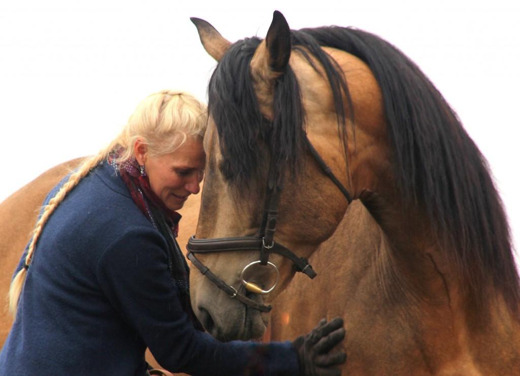 buiging, paard buiging, chris irwin