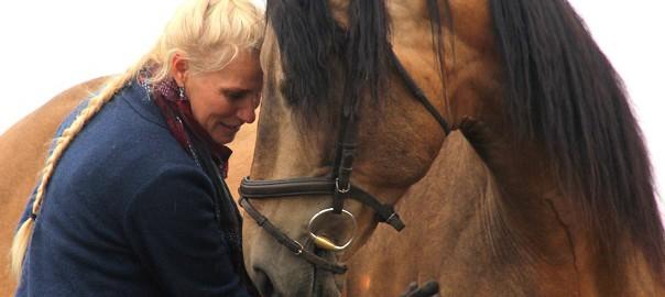 buiging paard