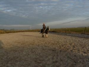 signe-sanne, paardrijden, paardensport