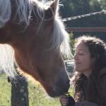 10 Geluksmomentjes met je paard