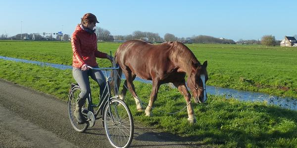 Fietsen met je paard