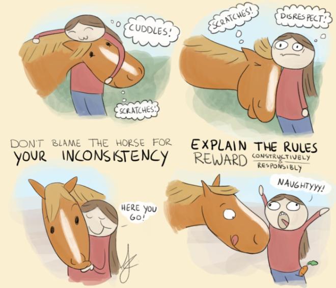 fed up fred, dominant paard, dominantie, lichaamstaal paarden
