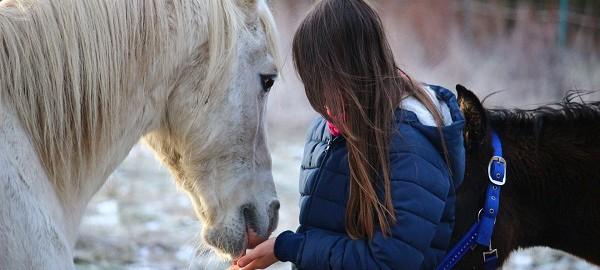 esther dommerholt, horse in mind, meisje met paard