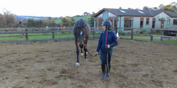 6 Tips die je moet weten als je paard moeilijk mee loopt