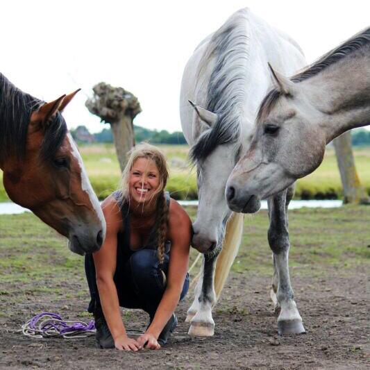 nicky van der sluis, horse in mind