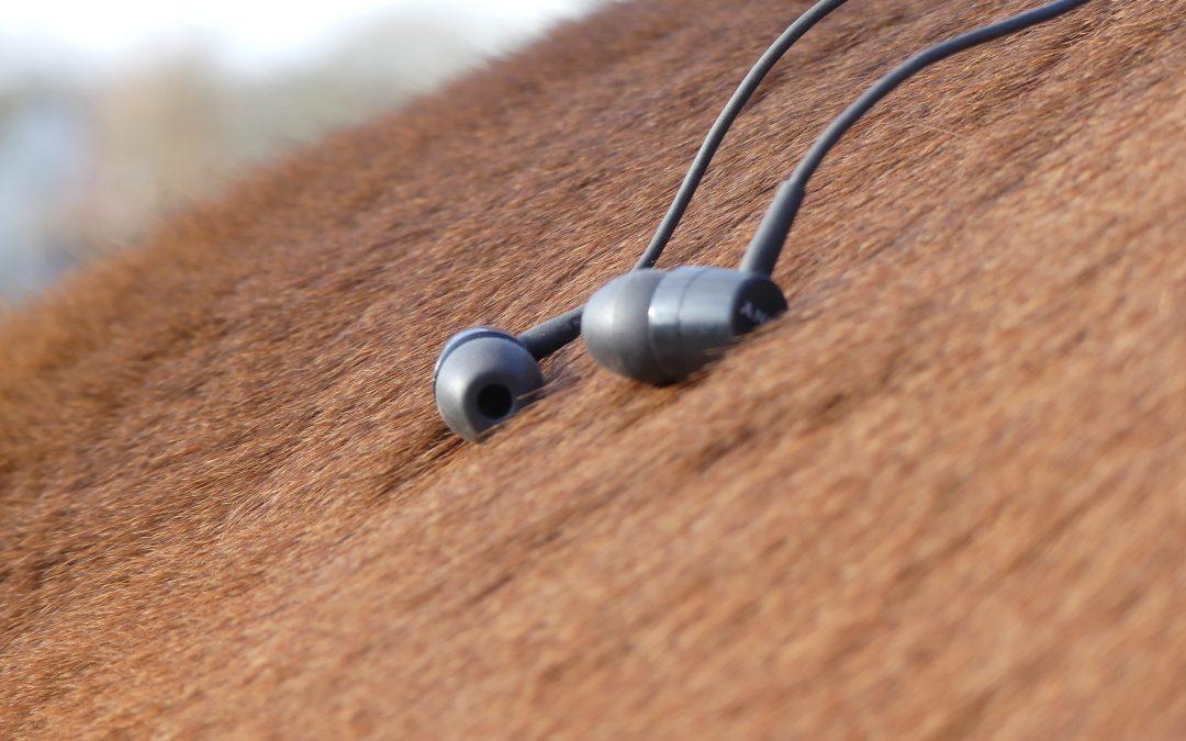 De 5 populairste Paardenpodcasts van 2020 – deze moet je geluisterd hebben