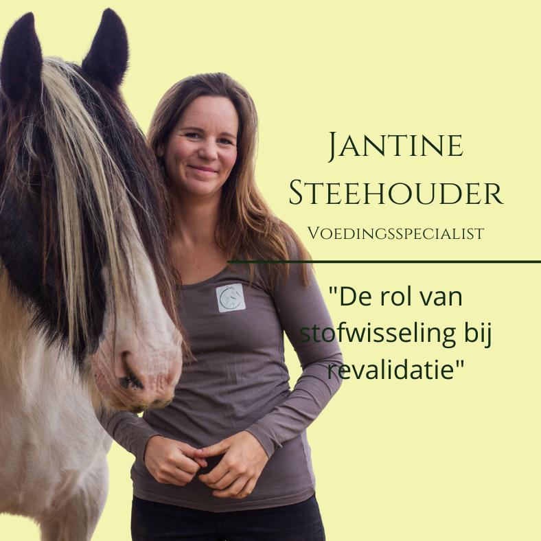 Jantine Steehouder