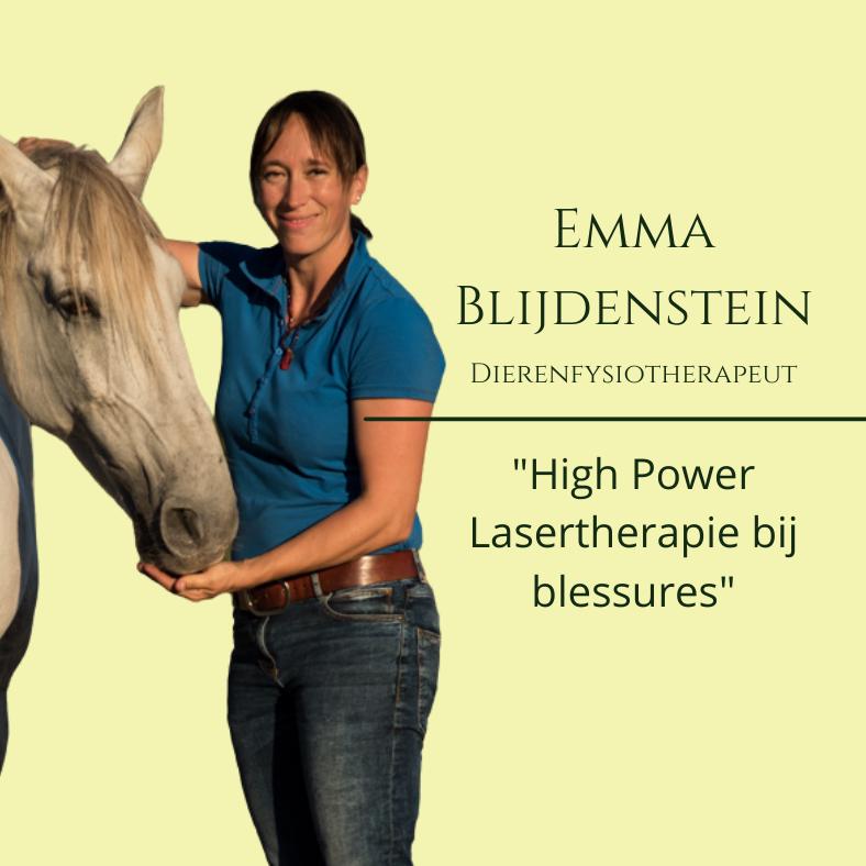 emma blijdenstein, lasertherapie bij paarden