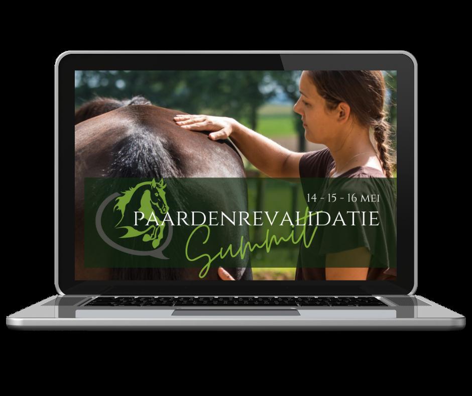 online summit over paardenrevalidatie