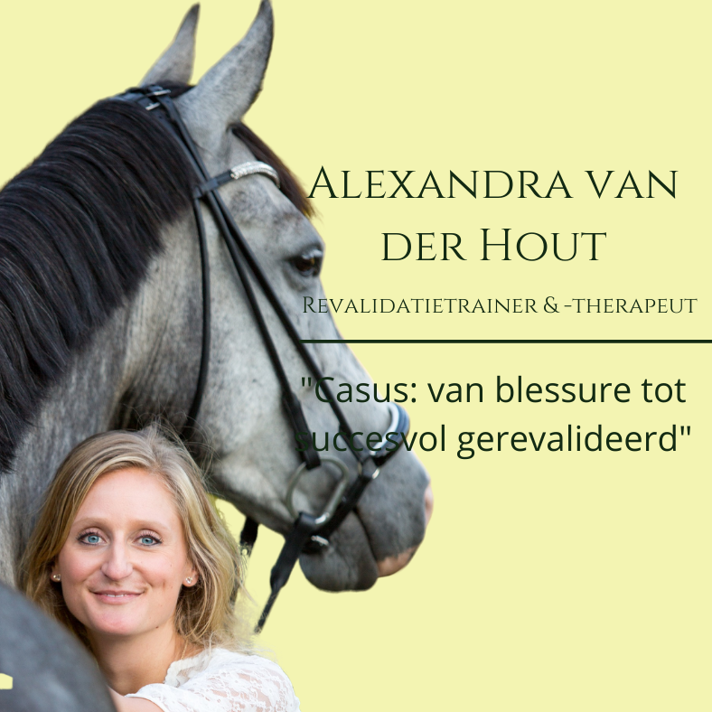 paardenrevalidatie casus, alexandra van der hout