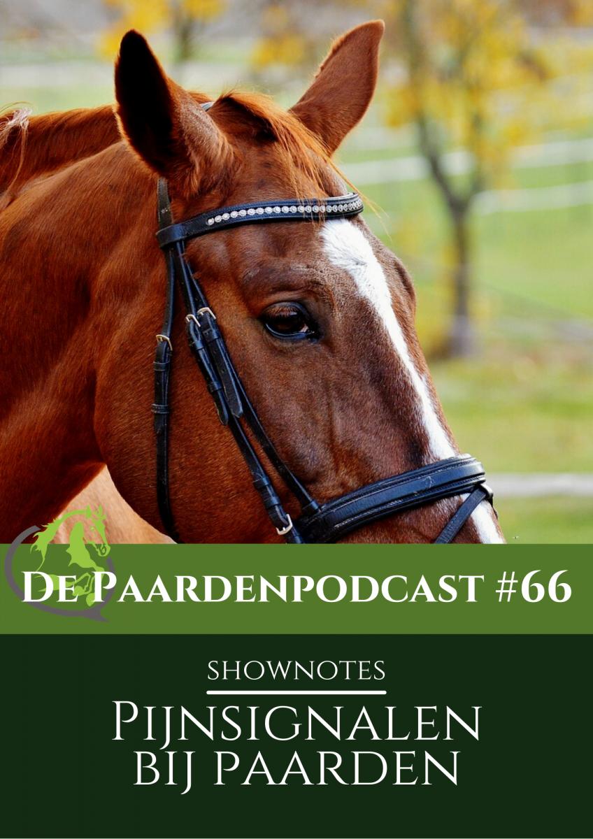 shownotes paardenpodcast pijnsignalen paard