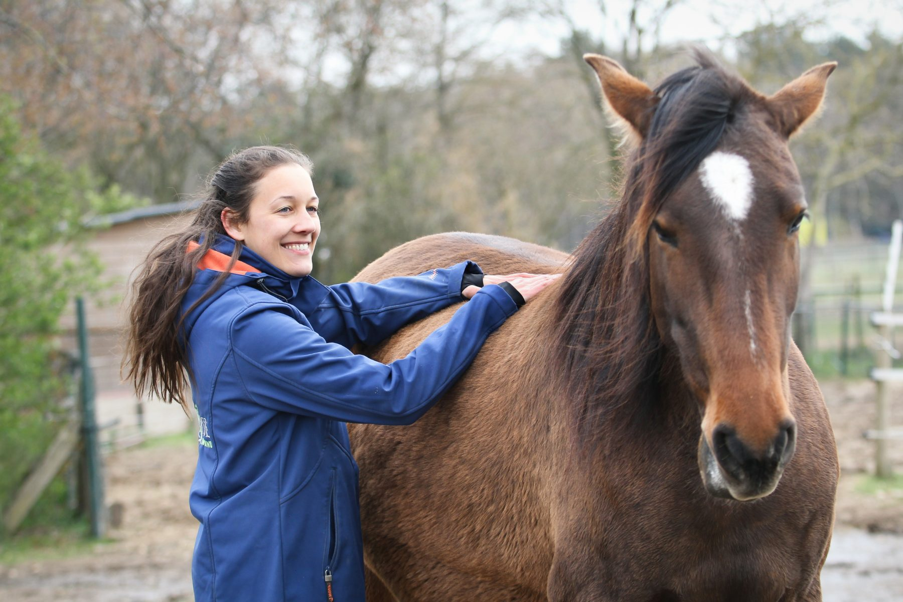 checklist bewegingsproblemen paard