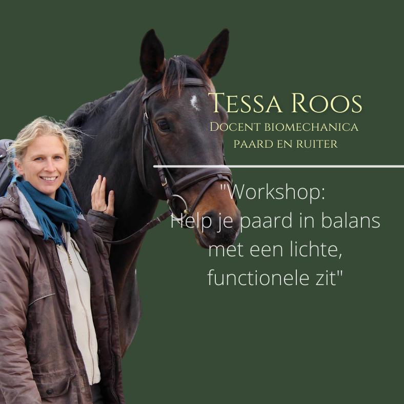 Tessa Roos, paardentraining seminar