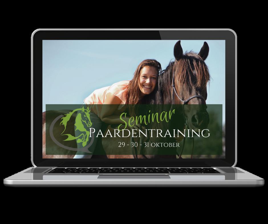Paardentraining, paarden trainen